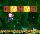 Cg Mario Macerası