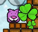 Maceracı Kedi 3