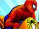 Örümcek Yarışı