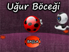 Webcam Ugur Böcegi